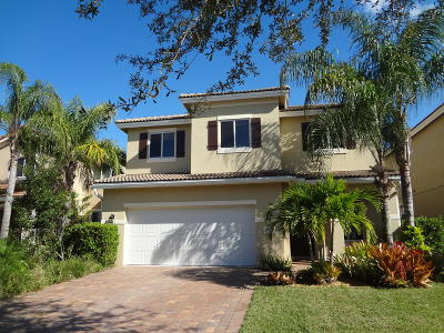 Palm City Single Family Home For Sale: 2913 SW Venice Court