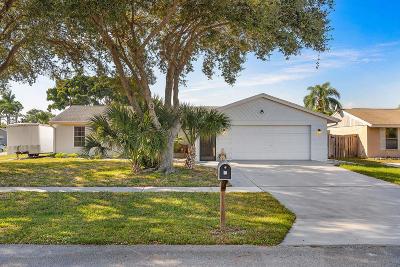 Boynton Beach Single Family Home For Sale: 8501 Raymond Drive