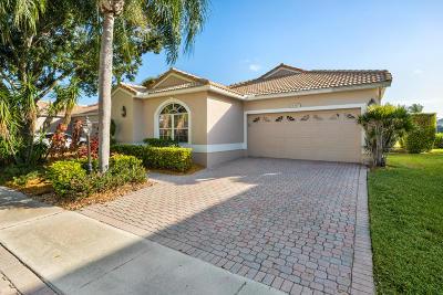Boca Raton Single Family Home For Sale: 6417 Brava Way