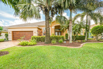 Port Saint Lucie Single Family Home For Sale: 211 SW Whitewood Drive