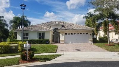 Lake Worth Single Family Home For Sale: 6350 Old Medinah Circle