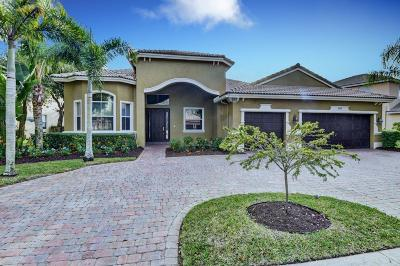 Lake Worth Single Family Home For Sale: 10178 Cypress Lakes Preserve Drive