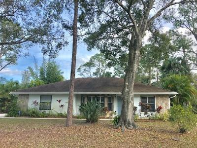 Jupiter Single Family Home For Sale: 17080 126th Terrace