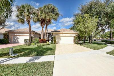 Boynton Beach Single Family Home For Sale: 9826 Crescent View Drive S