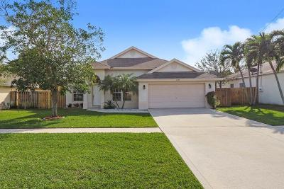 Jupiter Single Family Home For Sale: 6068 Drake Street