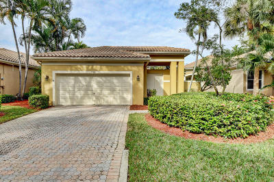 Boca Raton Single Family Home For Sale: 2405 NW 66th Drive
