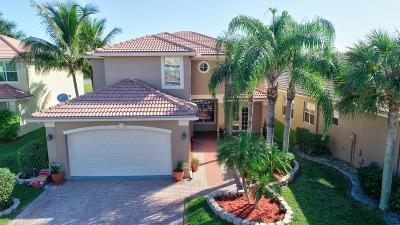 Greenacres Single Family Home For Sale: 5314 Island Gypsy Drive