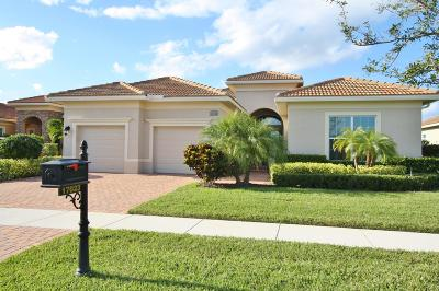 Port Saint Lucie Single Family Home For Sale: 17023 SW Sapri Way