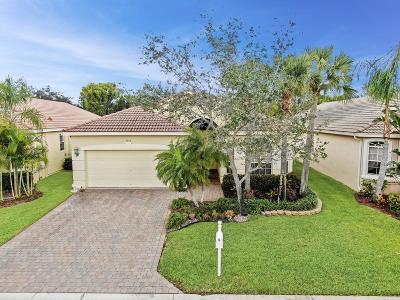 Lake Worth Single Family Home For Sale: 7115 Via Leonardo