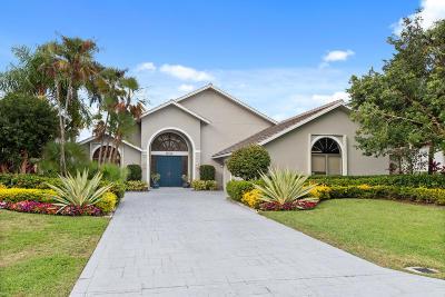 Palm Beach Gardens Single Family Home For Sale: 6415 Brandon Street