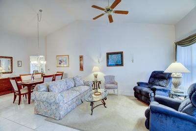 Port Saint Lucie Single Family Home For Sale: 386 NW Sherry Lane