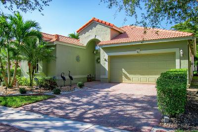 Boynton Beach Single Family Home For Sale: 10294 Copper Lake Drive