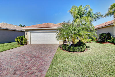 Boynton Beach Single Family Home For Sale: 11000 Carmelcove Circle