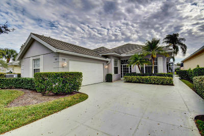 Port Saint Lucie, Saint Lucie West Single Family Home For Sale: 233 NW Bentley Circle
