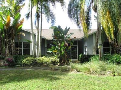 Palm Beach Gardens Single Family Home For Auction: 13241 Night Owl Lane