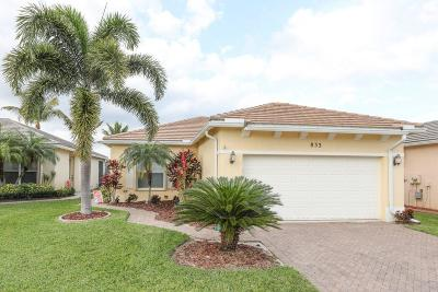 Port Saint Lucie Single Family Home For Sale: 833 SW Rocky Bayou Terrace