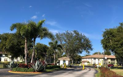 Boynton Beach Condo For Sale: 9810 Pineapple Tree Drive #204