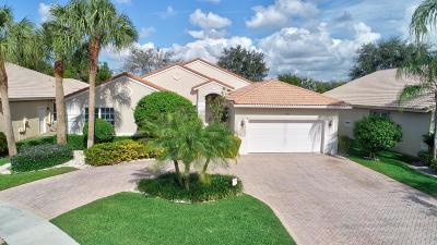 Boynton Beach Single Family Home For Sale: 7941 Rinehart Drive