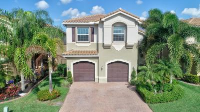 Boynton Beach Single Family Home Contingent: 8452 Calabria Lakes Drive