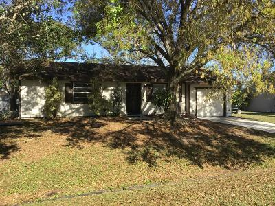 Port Saint Lucie Single Family Home For Sale: 325 NW Ferris Drive