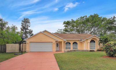 Port Saint Lucie Single Family Home For Sale: 2574 SE Perugia Street