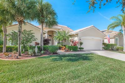 Port Saint Lucie Single Family Home For Sale: 221 NW Liseron Way
