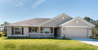 Port Saint Lucie Single Family Home For Sale: 3520 SW Masilunas Street