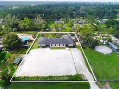 Royal Palm Beach Single Family Home For Sale: 11128 Sunset Boulevard