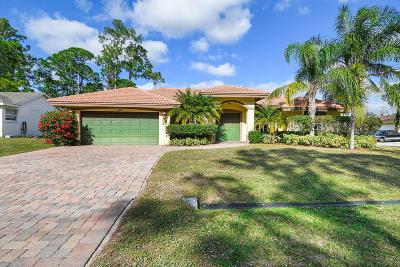 Port Saint Lucie Single Family Home For Sale: 873 SW Sultan Drive