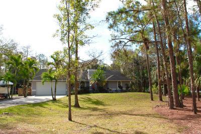 Jupiter Single Family Home For Sale: 11734 161 Street
