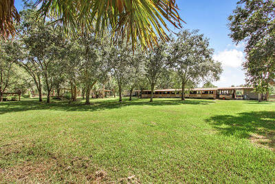 Loxahatchee Groves Single Family Home For Sale: 2833 F Road