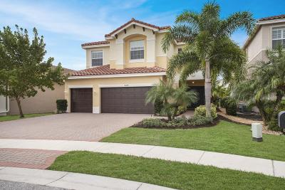 Boynton Beach Single Family Home For Sale: 8234 Fiera Ridge Drive