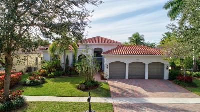 Delray Beach Single Family Home For Sale: 16385 W Via Venetia W