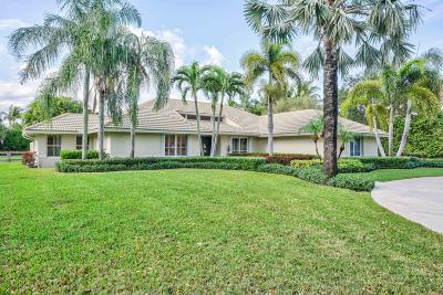 Palm Beach Gardens Single Family Home For Sale: 5463 Sea Biscuit Road