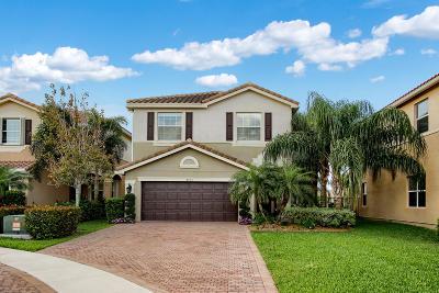 Boynton Beach Single Family Home For Sale: 8104 Brigamar Isles Avenue