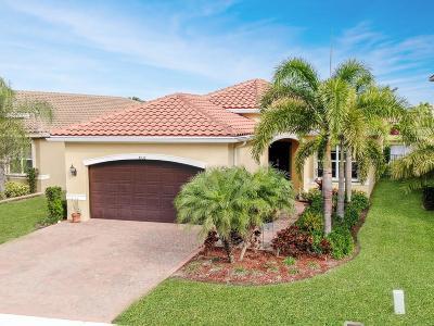Boynton Beach Single Family Home For Sale: 8136 Pinnacle Pass Way