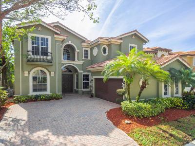 Delray Beach Single Family Home For Sale: 8012 Valhalla Drive
