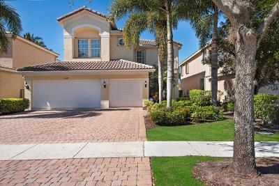 Boynton Beach Single Family Home For Sale: 10667 Hilltop Meadow Point