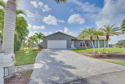 Lake Worth Single Family Home For Sale: 3261 Hoylake Road