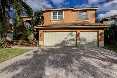 Boca Raton Single Family Home For Sale: 22135 Braddock Place