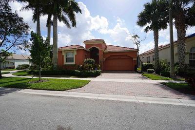 Wellington Single Family Home For Sale: 9206 Via Classico E