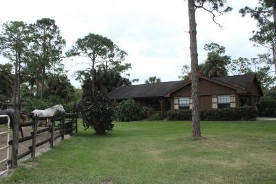 Jupiter Single Family Home For Sale: 17166 123 Terrace