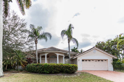 Boca Raton Single Family Home For Auction: 19162 Cloister Lake Lane