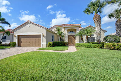 Boynton Beach Single Family Home For Sale: 6751 E Liseron