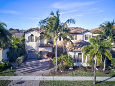 Boynton Beach Single Family Home For Sale: 4073 Artesa Drive