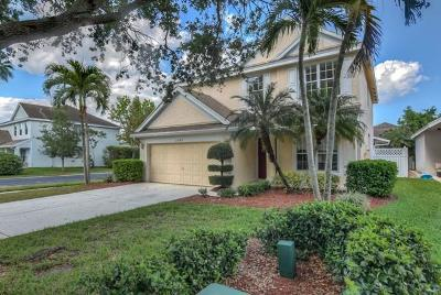 Palm City Single Family Home For Sale: 3189 SW Solitaire Palm Drive