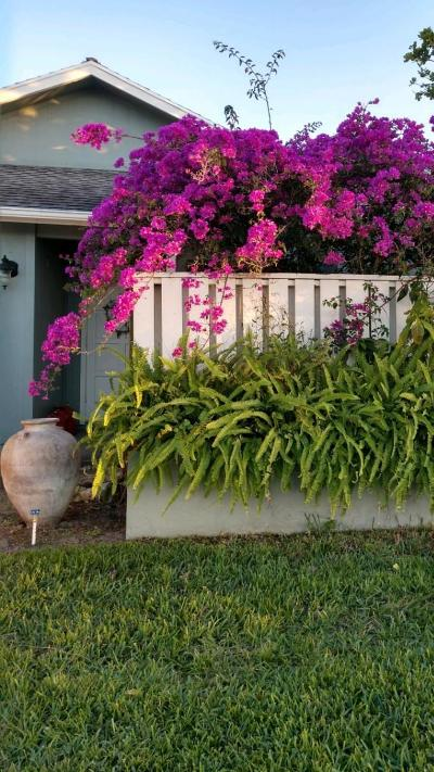 Hobe Sound Townhouse For Sale: 6694 SE Yorktown Drive