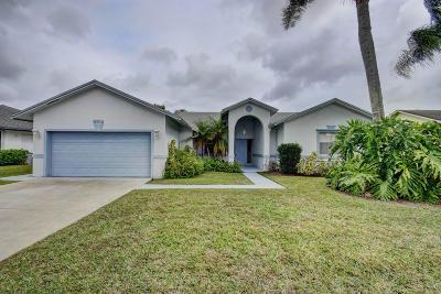 Boynton Beach Single Family Home For Sale: 6314 Indian Wells Boulevard