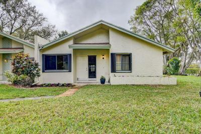 Delray Beach Single Family Home For Sale: 3932 Arelia Drive S