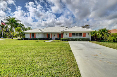 Boynton Beach Single Family Home For Sale: 4560 S Lake Drive